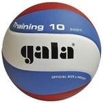 Мяч волейбольный Gala Training 10 размер 5