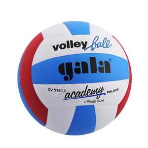 Мяч волейбольный Gala Akademy размер 5 фото
